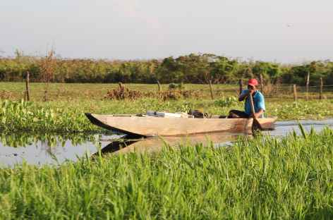 Balade en bateau dans les marais de Pijino - Colombie -