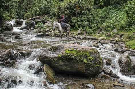Descente vers Salento - Colombie -