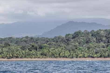 Sauvage côte Pacifique - Colombie -