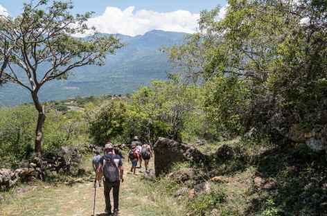 Camino Real -