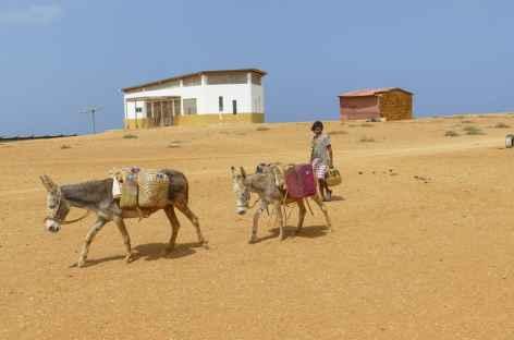 Désert de la Guajira, la corvée d'eau ! -