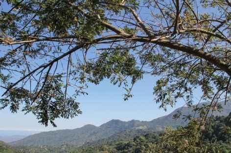 Sierra Nevada de Santa Marta - Colombie -