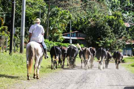 Un Costa Rical rural dans la région du volcan Tenorio - Costa Rica -