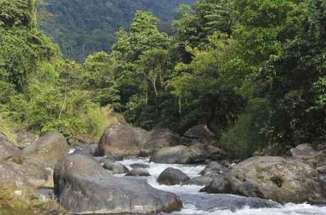 Le rio Savegre près du village de Piedras Blancas - Costa Rica -