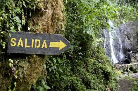 Balade près de Dota - Costa Rica -