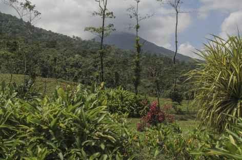 Le volcan Arenal depuis le Cerro Chato - Costa Rica -