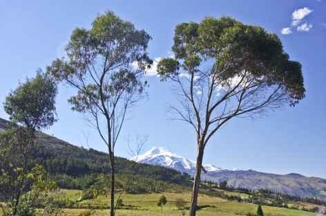 Paysage dans la campagne d'Otavalo - Equateur -