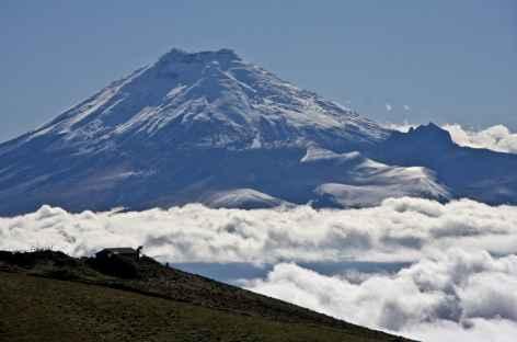 Le Cotopaxi flotte au-dessus des nuages - Equateur -