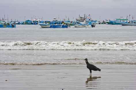 Le port de pêche de Puerto Lopez - Equateur -