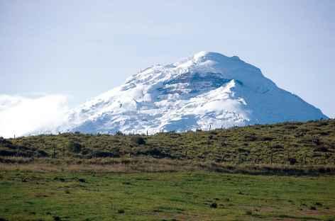 Le volcan Cotopaxi depuis l'hacienda Porvenir - Equateur -