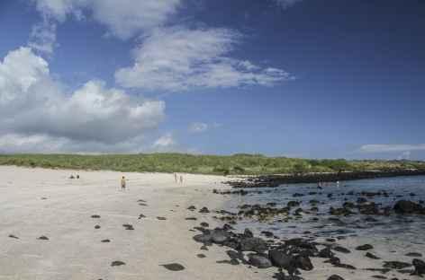 Archipel des Galapagos, la plage Loberia (île San Cristobal) - Equateur -