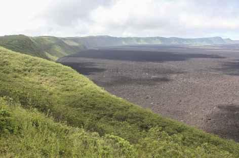 Archipel des Galapagos, balade vers le volcan Sierra Negra (île Isabela) - Equateur -