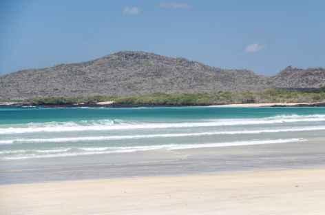 Sur les plages d'Isabela - Equateur -