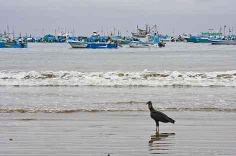 Puerto Lopez sur la côte Pacifique - Equateur -