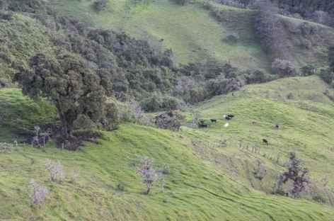 Paysage à Yunguilla - Equateur -