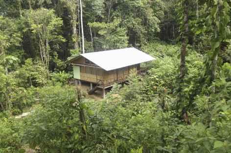Notre lodge en Amazonie - Equateur -