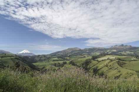 Vue sur le Cotopaxi depuis notre auberge à Rumipamba - Equateur -