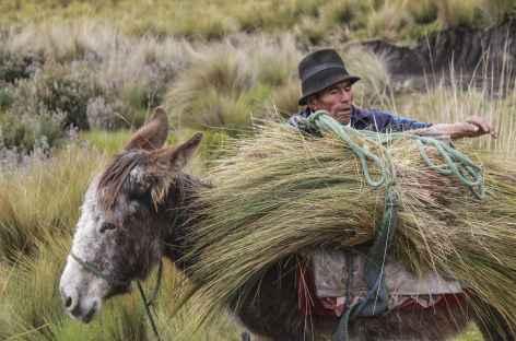 Rencontre avec Baltazar Ushca, le dernier chercheur de glace du Chimborazo - Equateur -