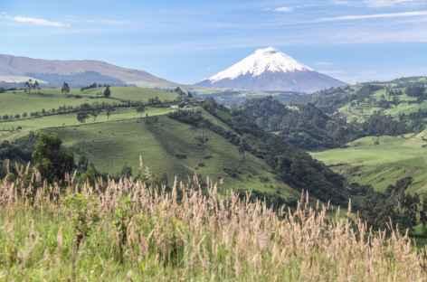 Vue sur le Cotopaxi depuis Rumipamba - Equateur -