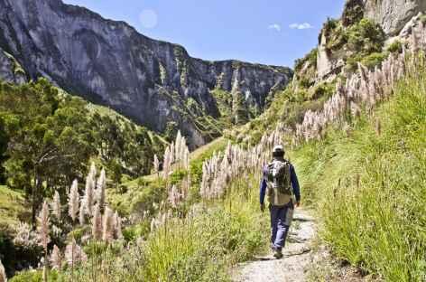 Dans le canyon de Toachi - Equateur -