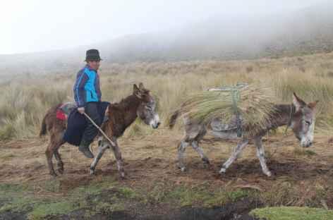 Rencontre autour du Chimborazo - Equateur -