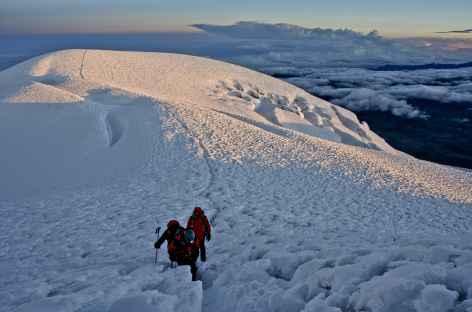 Près du sommet du Chimborazo - Equateur -