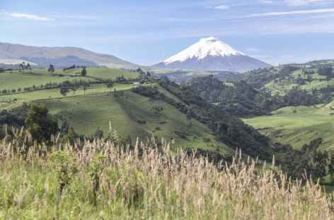 Le Cotopaxi depuis Rumipamba - Equateur -