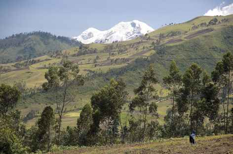 Au loin le Cayembe - Equateur -