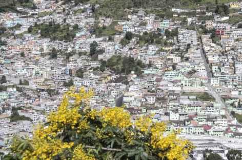 Quito depuis le Panecillo -