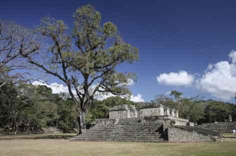 Sur le site Maya de Copan - Honduras -