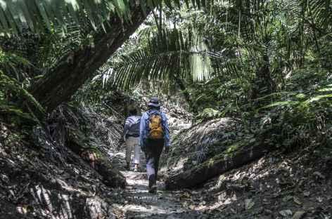 Balade sur un site Maya - Guatemala -