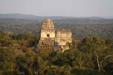 Site Maya de Tikal - Guatemala -