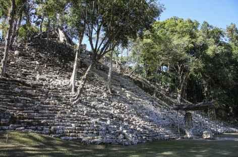 Sur le site Maya de Copan - Guatemala -