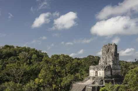 Sur le site Maya de Tikal - Guatemala -