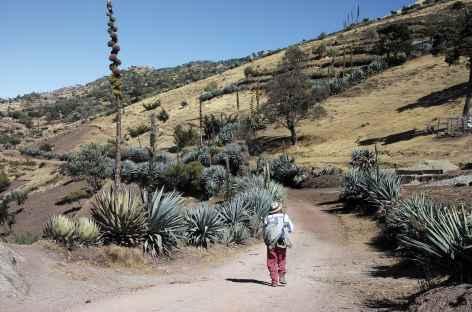 Trek dans les Cuchumatanes - Guatemala -