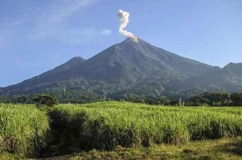 Le Fuego et son panache de fumée - Guatemala -