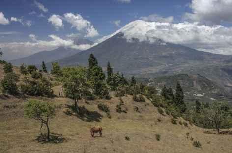 Début de la randonnée sur le volcan Pacaya - Guatemala -