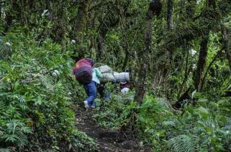 Notre équipe de porteurs pour l'ascension du Fuego - Guatemala -
