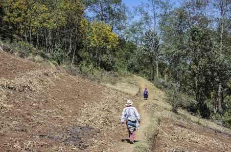 Au cours du trek dans les Cuchumatanes - Guatemala -