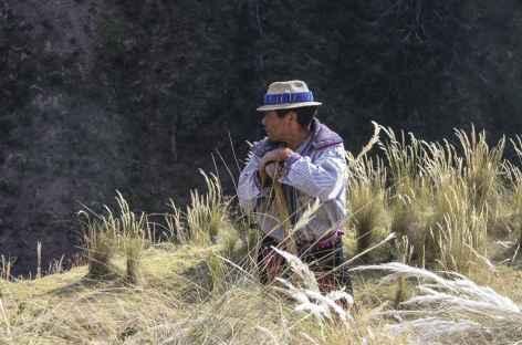 Rencontre dans les champs - Guatemala -