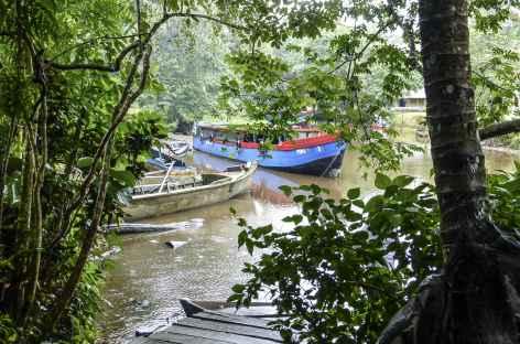 Dans la réserve Los Gatuzos - Nicaragua -