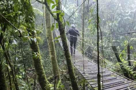 Balade autour de la finca - Nicaragua -