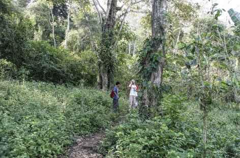 Balade sur l'île Omotepe - Nicaragua  -