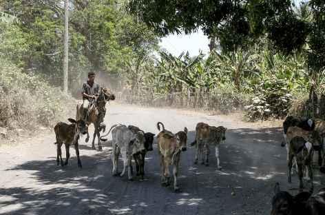 Ambiance sur l'île Omotepe - Nicaragua  -