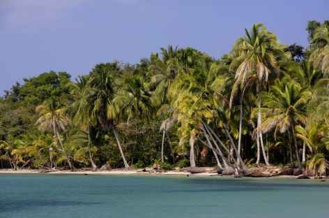 Balade vers la plage des étoiles de mer à Bocas del Toro - Panama -