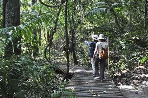 Balade dans le parc du Volcan Baru - Panama -