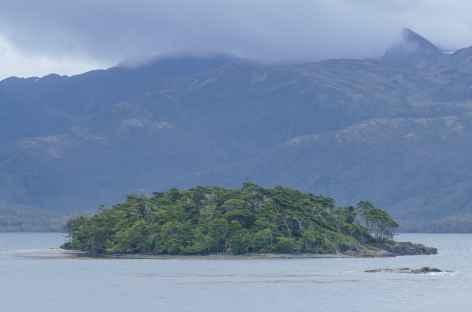 Croisière en Patagonie, îlots Tuckers -