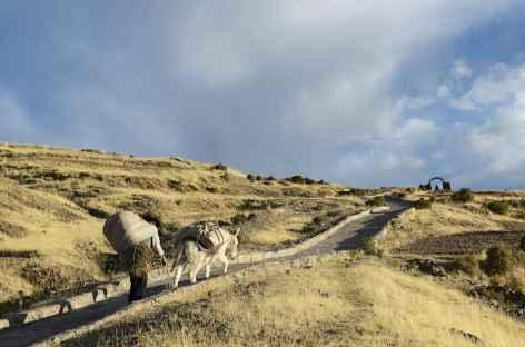 Balade sur l'île Amantani - Pérou -