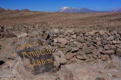 Vue sur le volcan Ampato depuis le col de Patapampa  - Pérou -