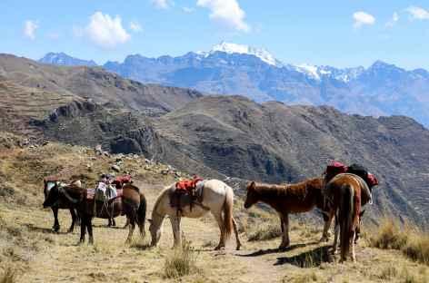 Entre Patabamba et Huchuy Qosqo - Pérou -